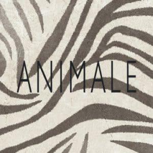 Animale para Dell Anno Curitiba